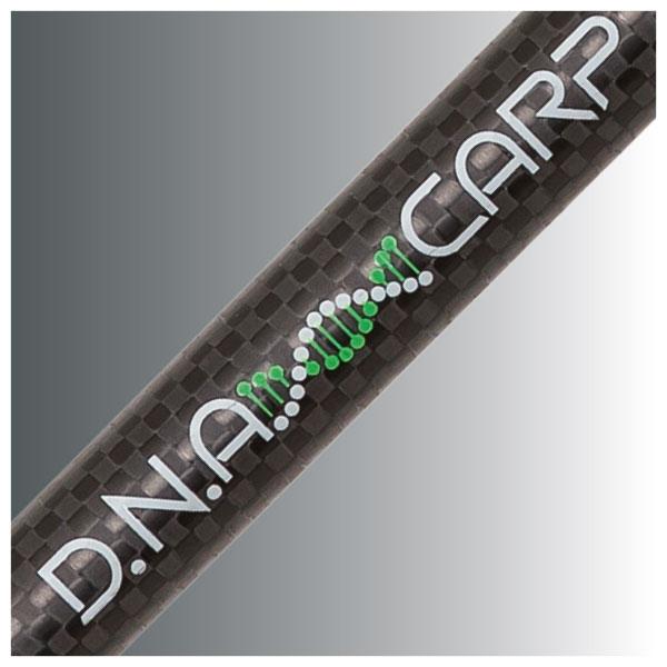 DNA carp Details
